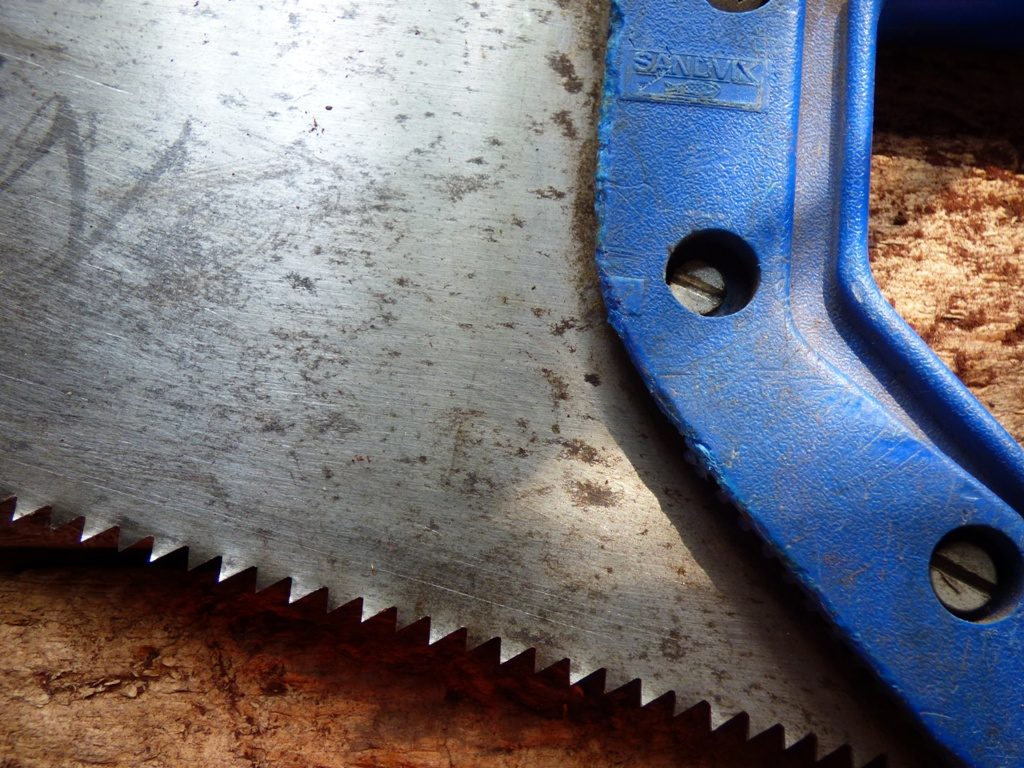 Closeup of the teeth of a crosscut wood saw